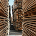 timber-warehouse